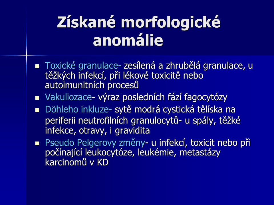 Získané morfologické anomálie
