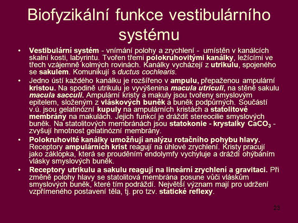 Biofyzikální funkce vestibulárního systému