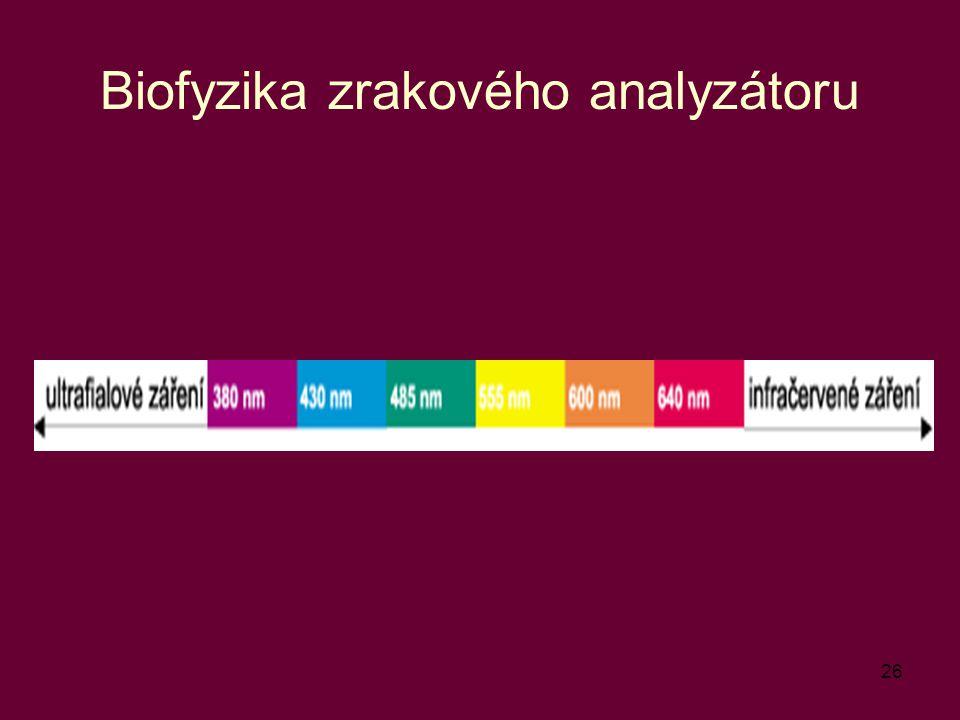 Biofyzika zrakového analyzátoru