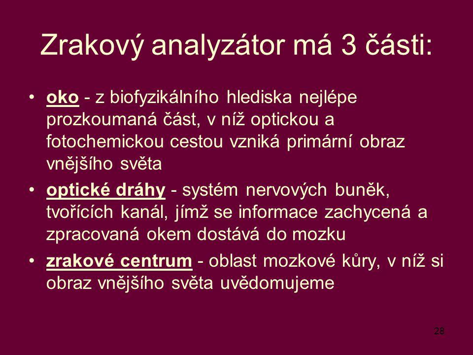 Zrakový analyzátor má 3 části: