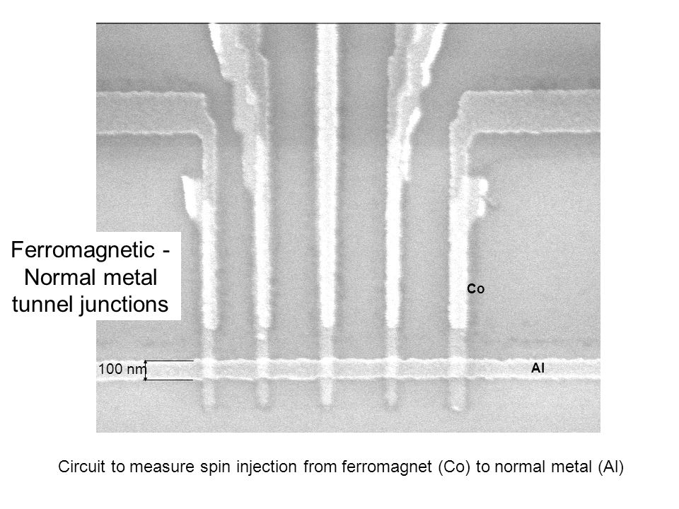 Ferromagnetic - Normal metal tunnel junctions