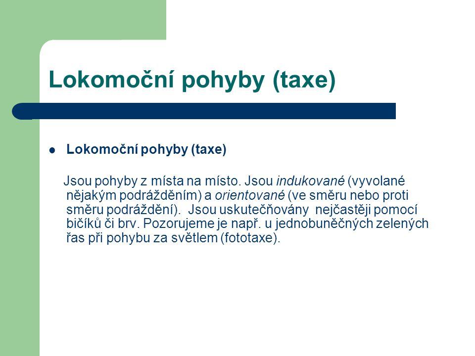 Lokomoční pohyby (taxe)
