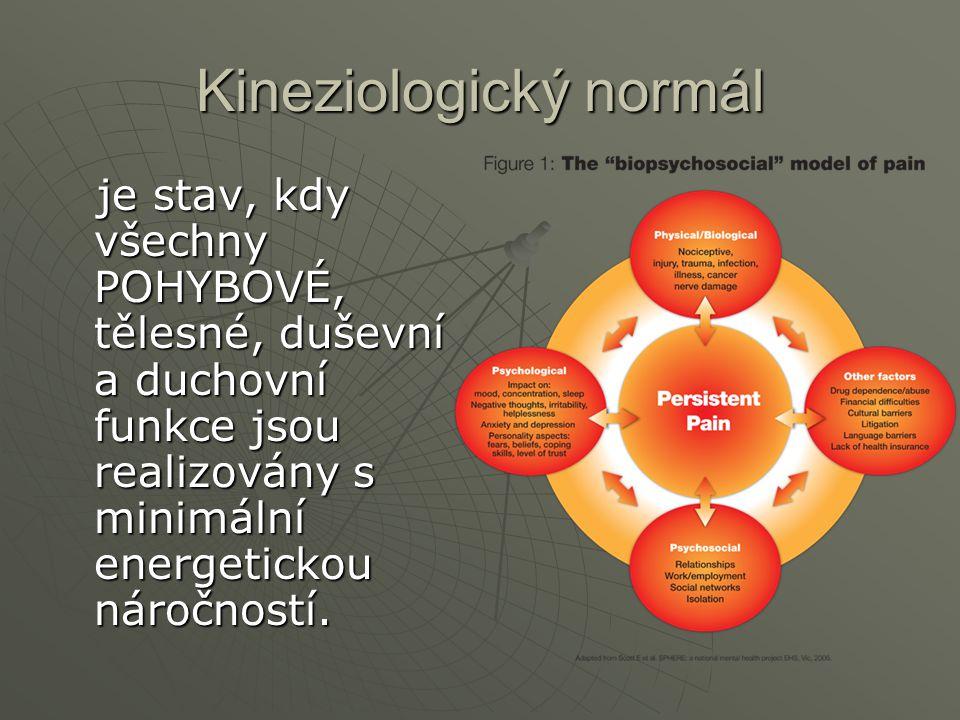 Kineziologický normál