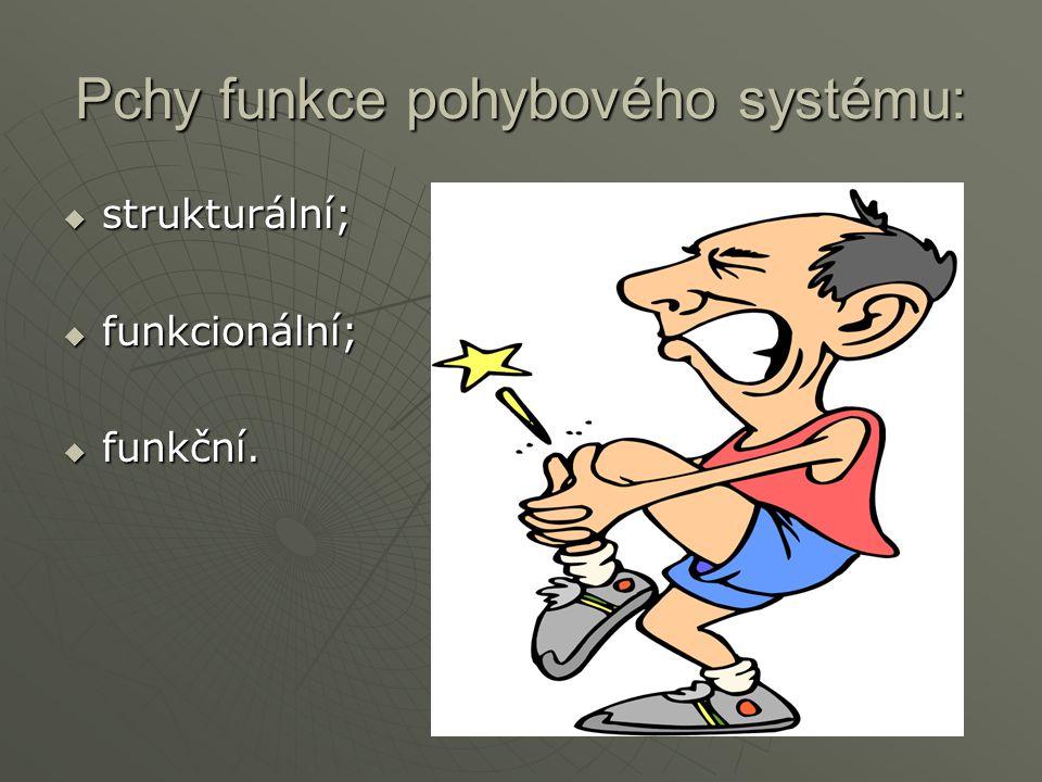 Pchy funkce pohybového systému: