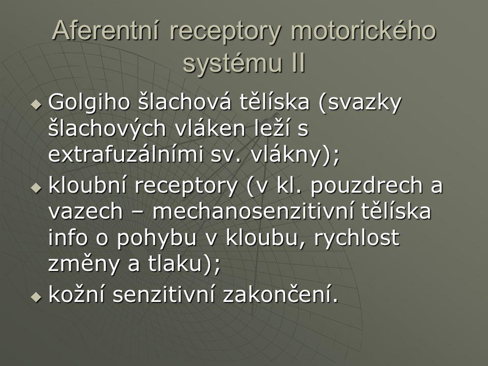Aferentní receptory motorického systému II