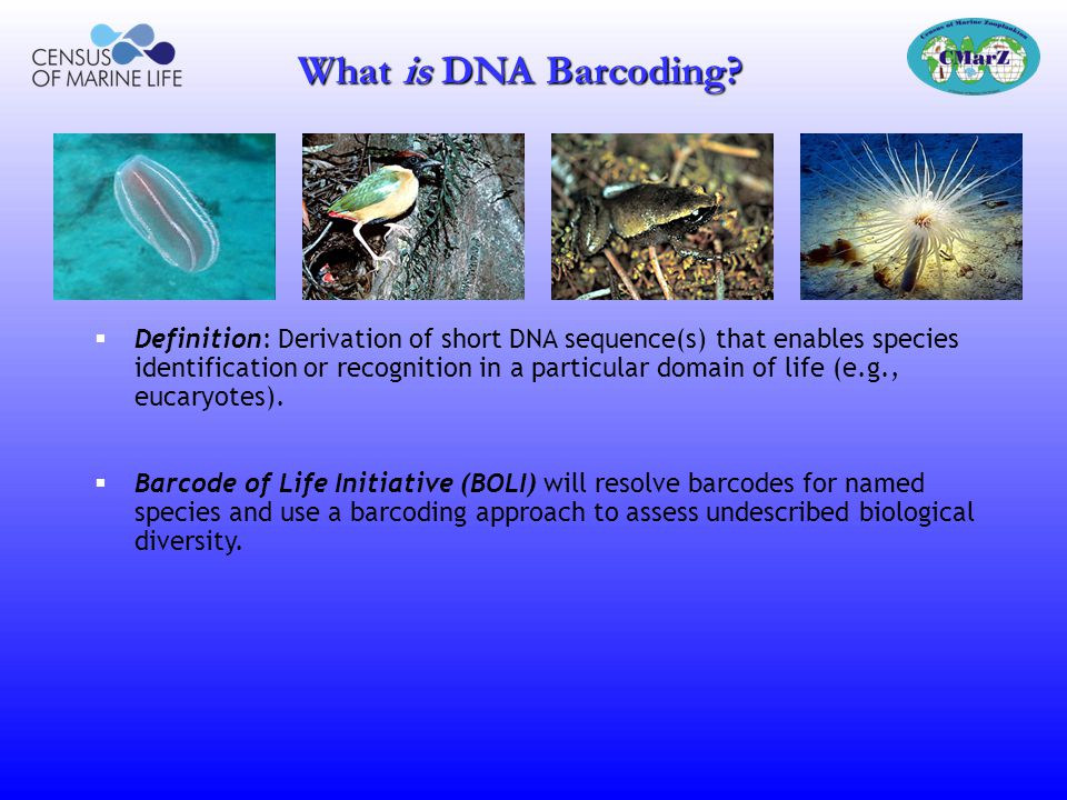 What is DNA Barcoding