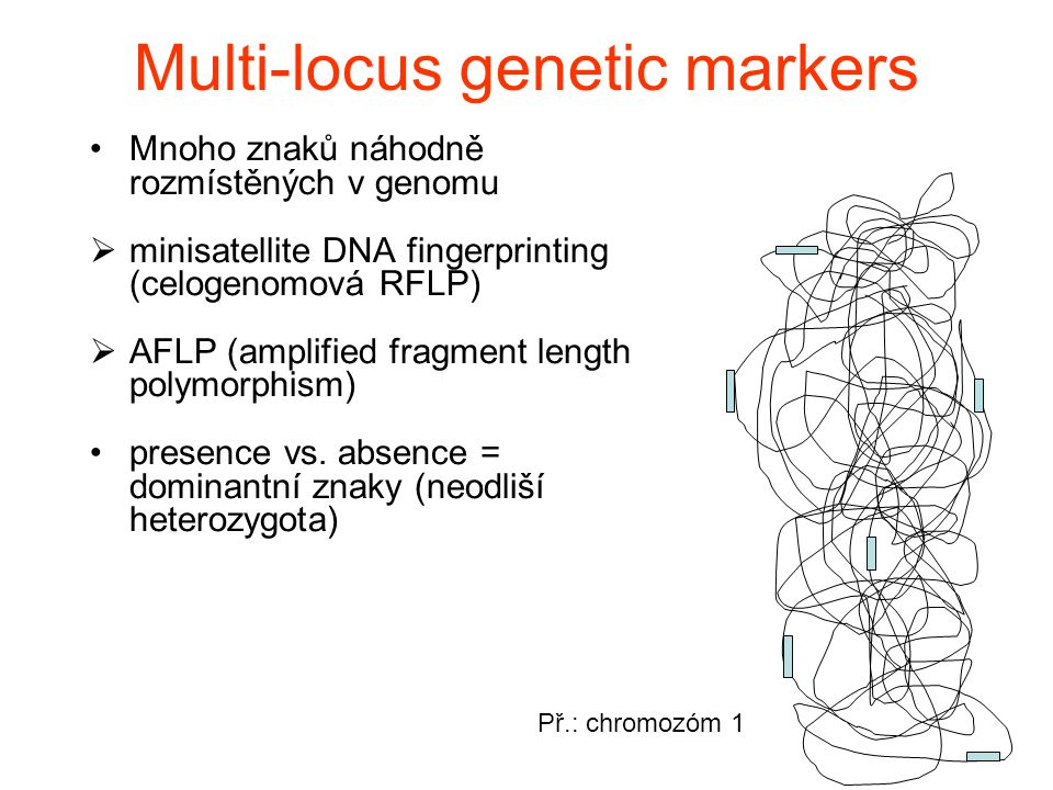 Multi-locus genetic markers