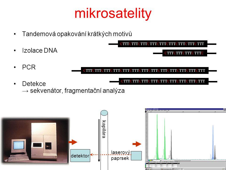 mikrosatelity Tandemová opakování krátkých motivů Izolace DNA PCR