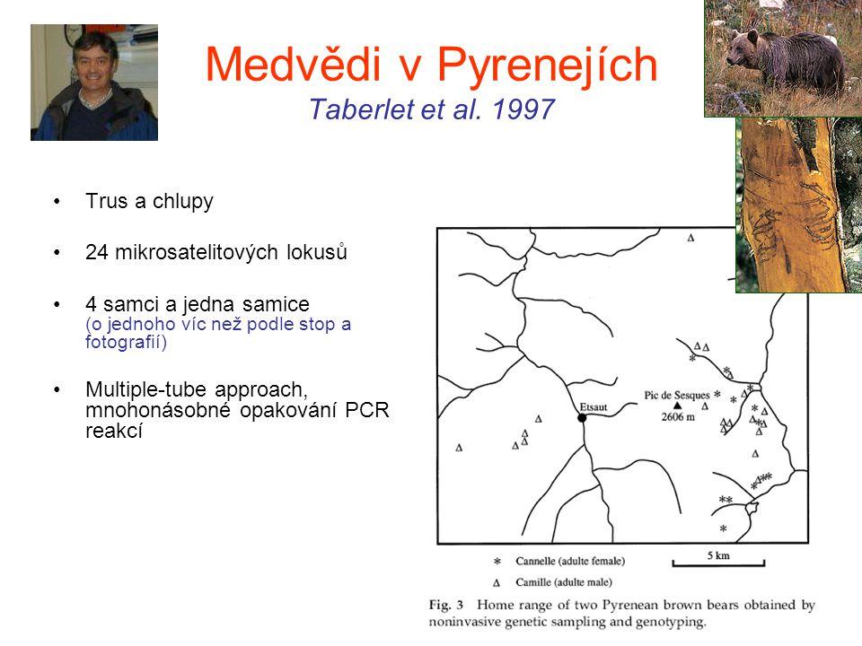 Medvědi v Pyrenejích Taberlet et al. 1997
