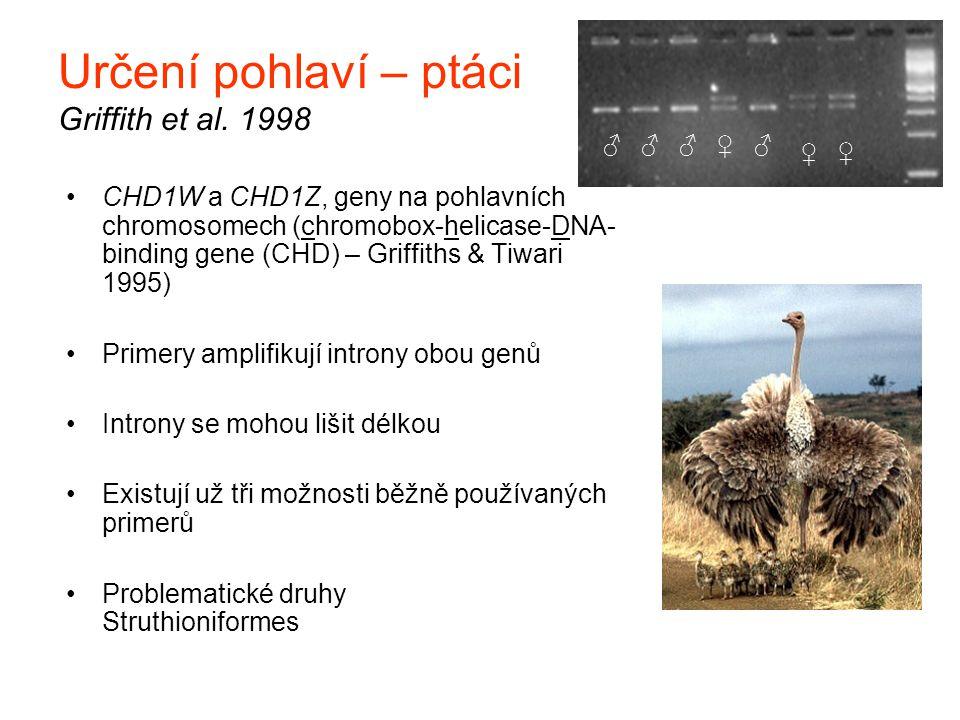 Určení pohlaví – ptáci Griffith et al. 1998