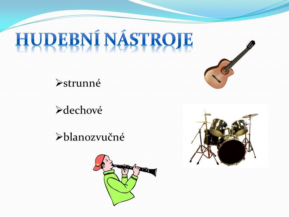 hudební nástroje strunné dechové blanozvučné