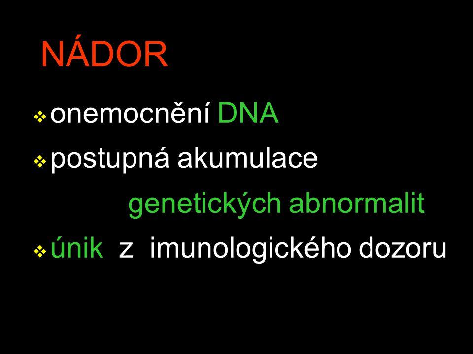 NÁDOR onemocnění DNA postupná akumulace genetických abnormalit
