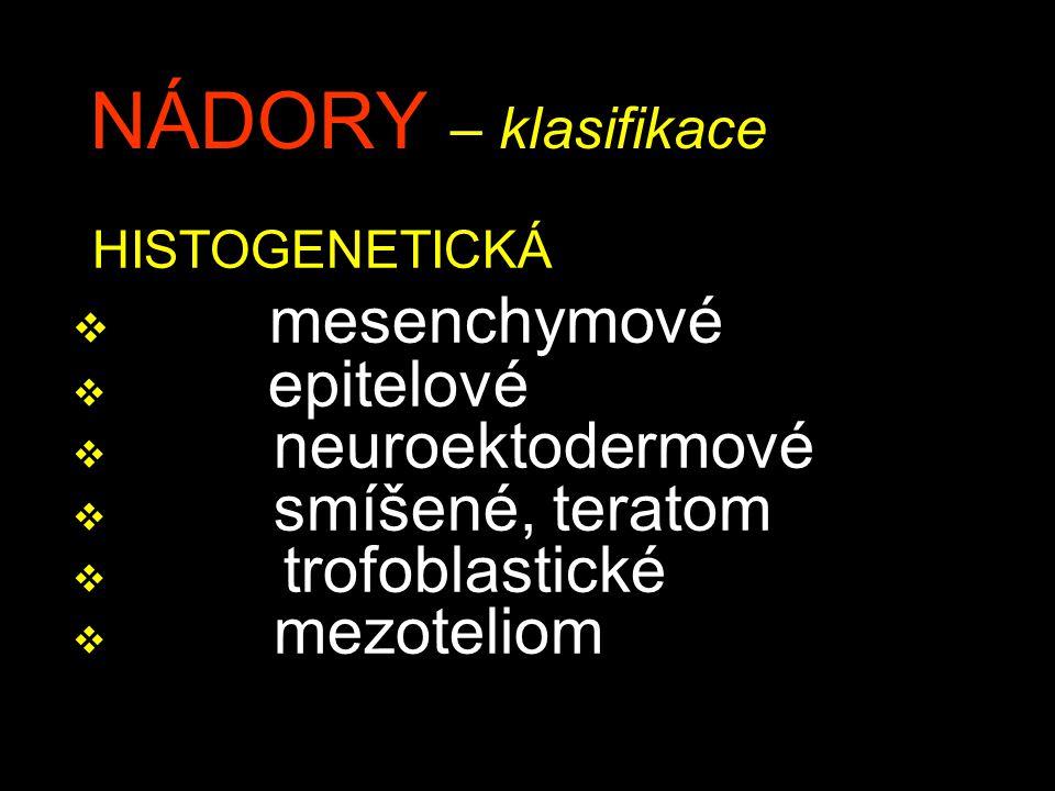NÁDORY – klasifikace HISTOGENETICKÁ mesenchymové epitelové