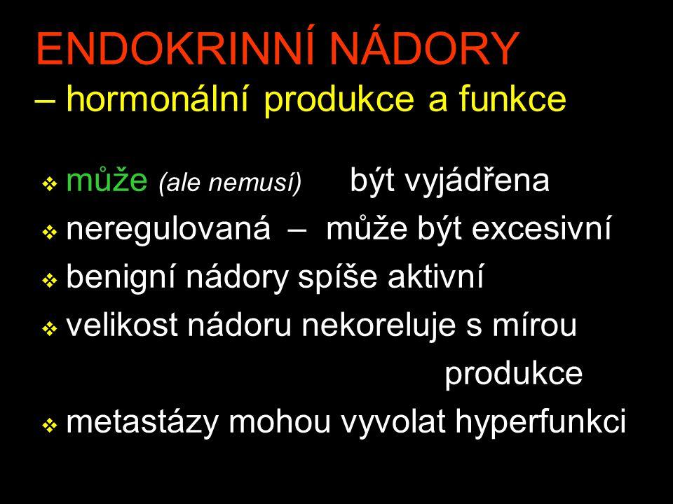 ENDOKRINNÍ NÁDORY – hormonální produkce a funkce