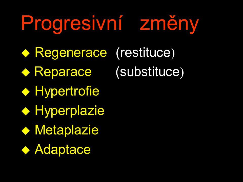 Progresivní změny Regenerace (restituce) Reparace (substituce)