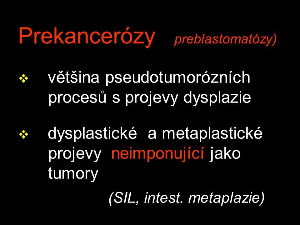 Prekancerózy preblastomatózy)