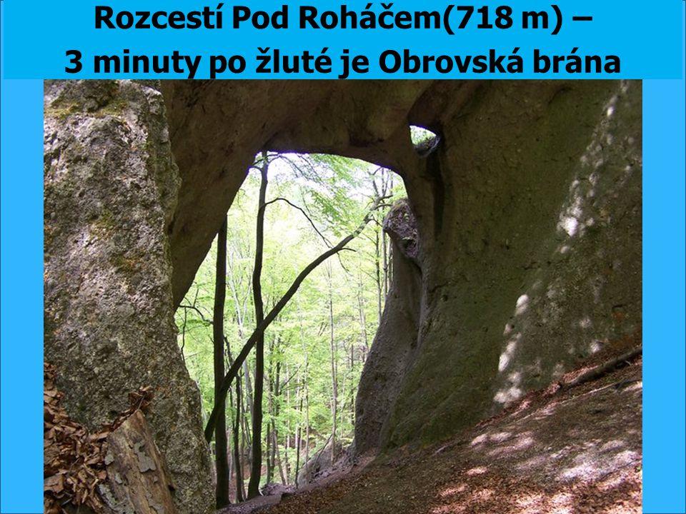 Rozcestí Pod Roháčem(718 m) – 3 minuty po žluté je Obrovská brána