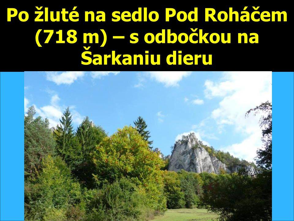 Po žluté na sedlo Pod Roháčem (718 m) – s odbočkou na Šarkaniu dieru