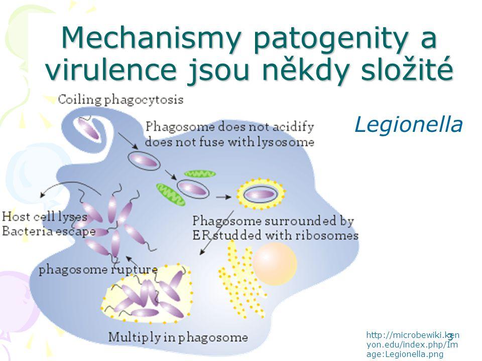 Mechanismy patogenity a virulence jsou někdy složité