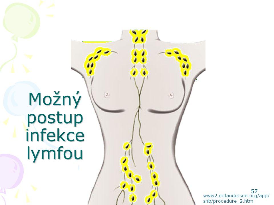 Možný postup infekce lymfou