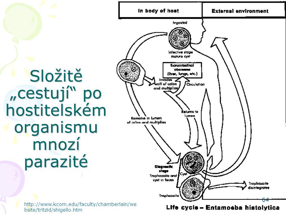 """Složitě """"cestují po hostitelském organismu mnozí parazité"""