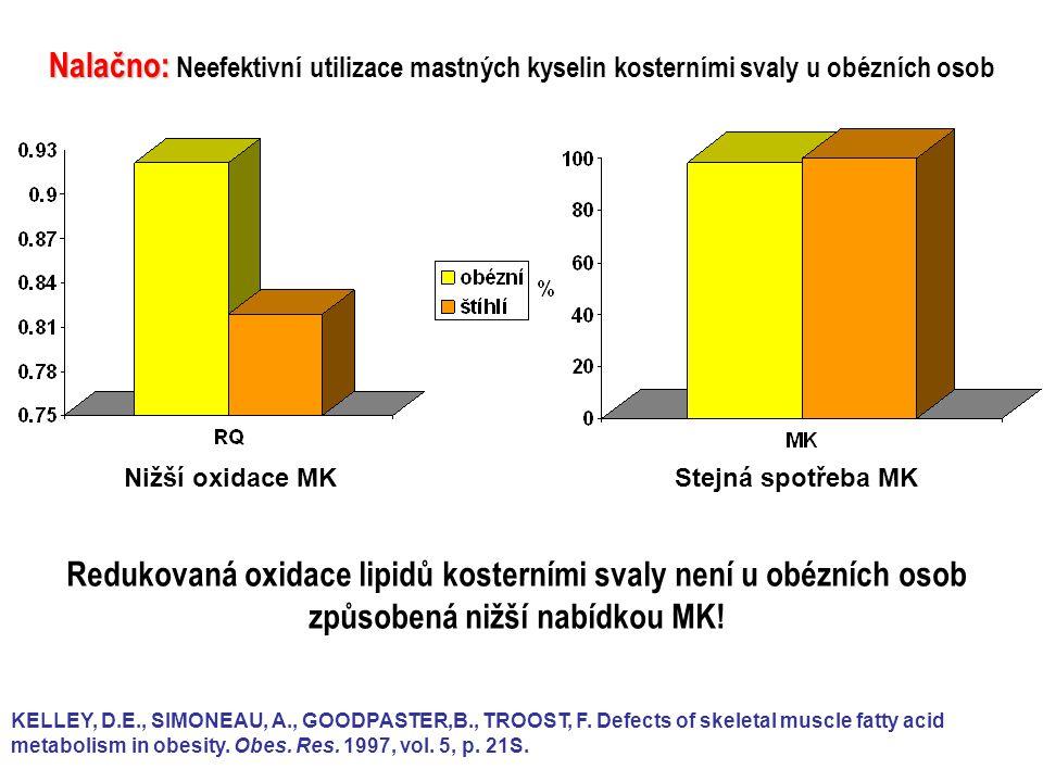 Nalačno: Neefektivní utilizace mastných kyselin kosterními svaly u obézních osob