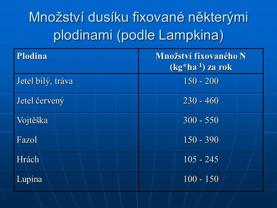 Množství dusíku fixované některými plodinami (podle Lampkina)