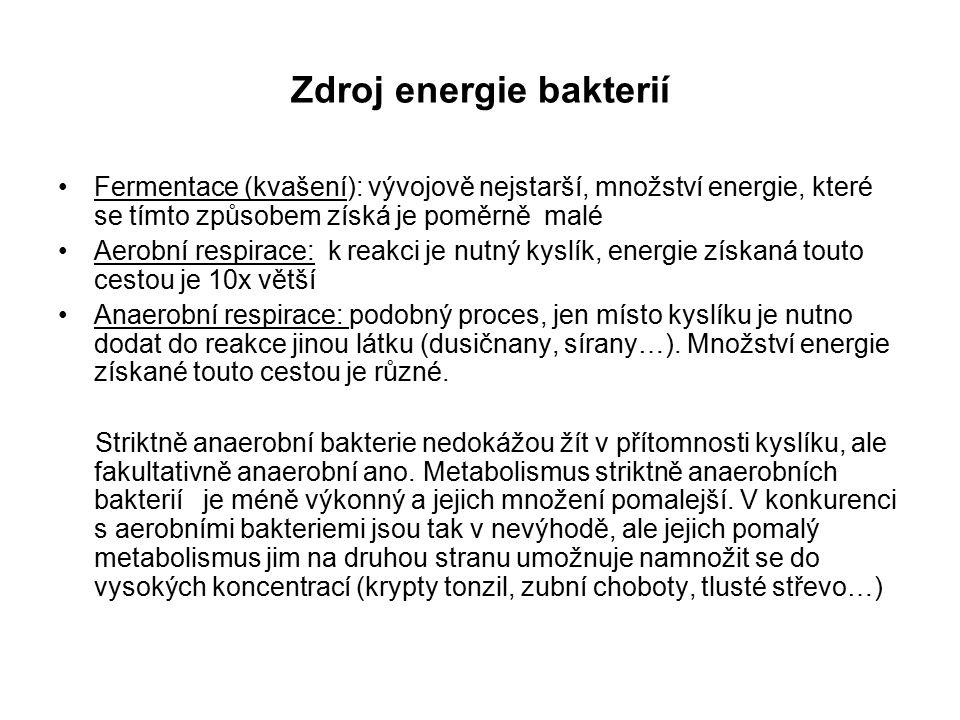 Zdroj energie bakterií