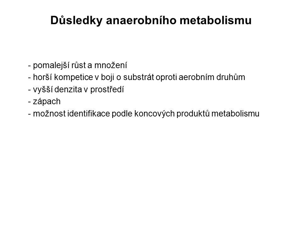 Důsledky anaerobního metabolismu