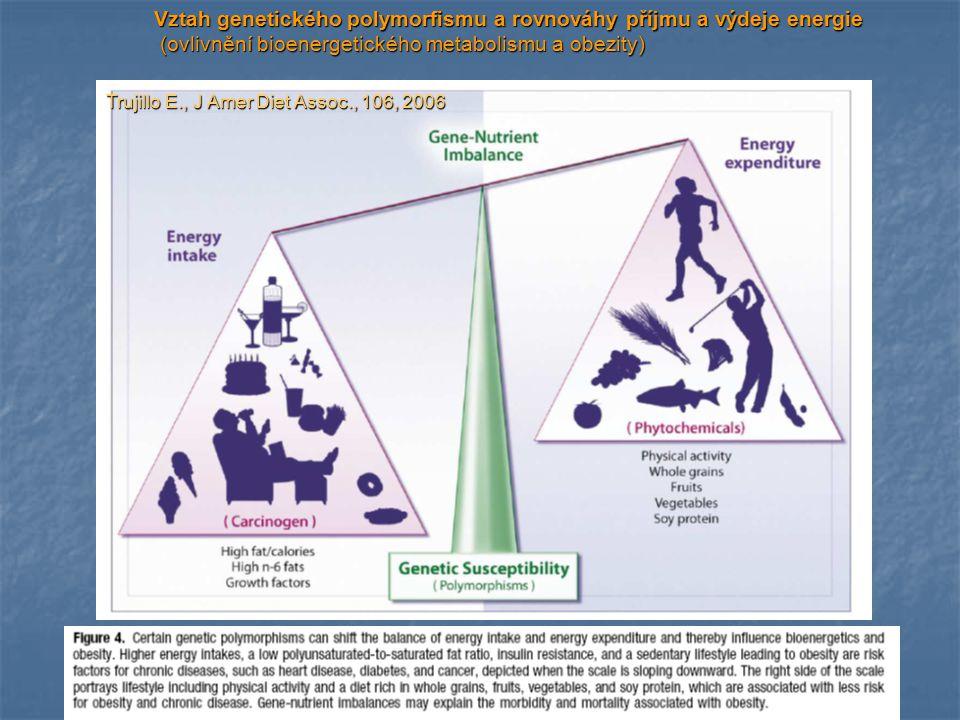 Vztah genetického polymorfismu a rovnováhy příjmu a výdeje energie
