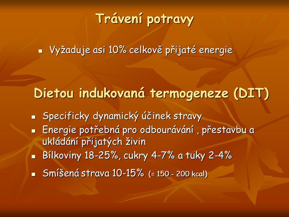 Dietou indukovaná termogeneze (DIT)