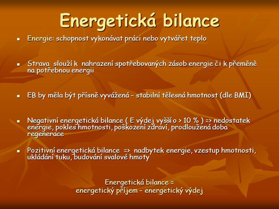 energetický příjem – energetický výdej