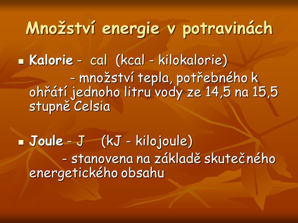 Množství energie v potravinách