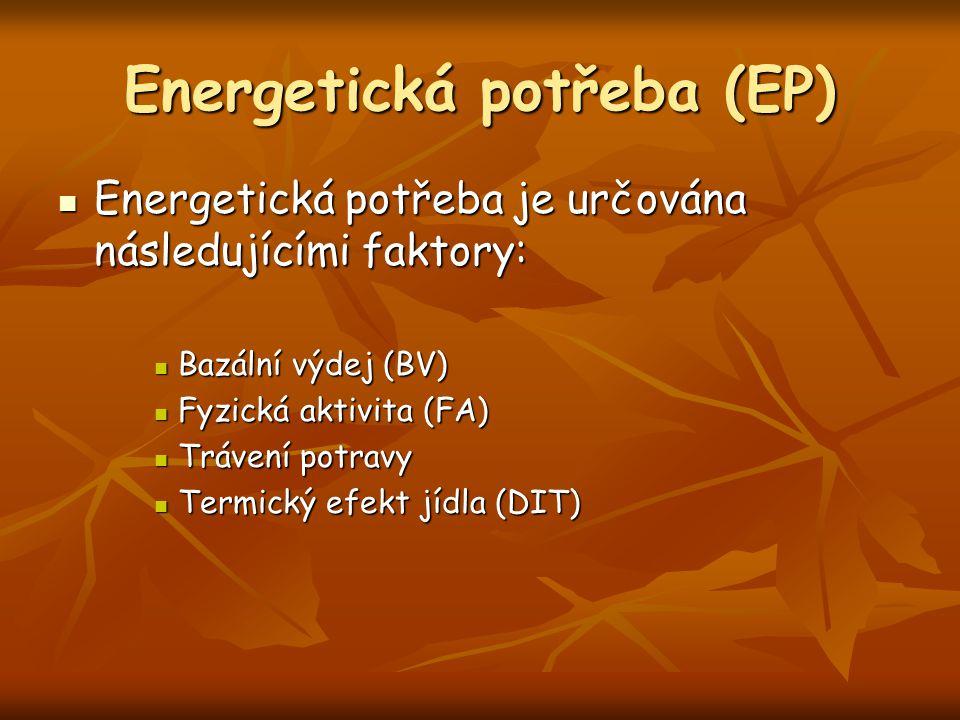 Energetická potřeba (EP)