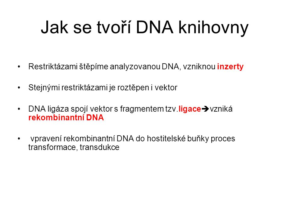 Jak se tvoří DNA knihovny