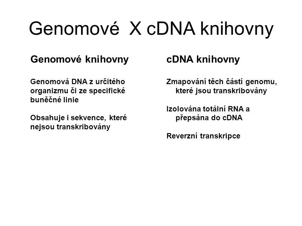 Genomové X cDNA knihovny