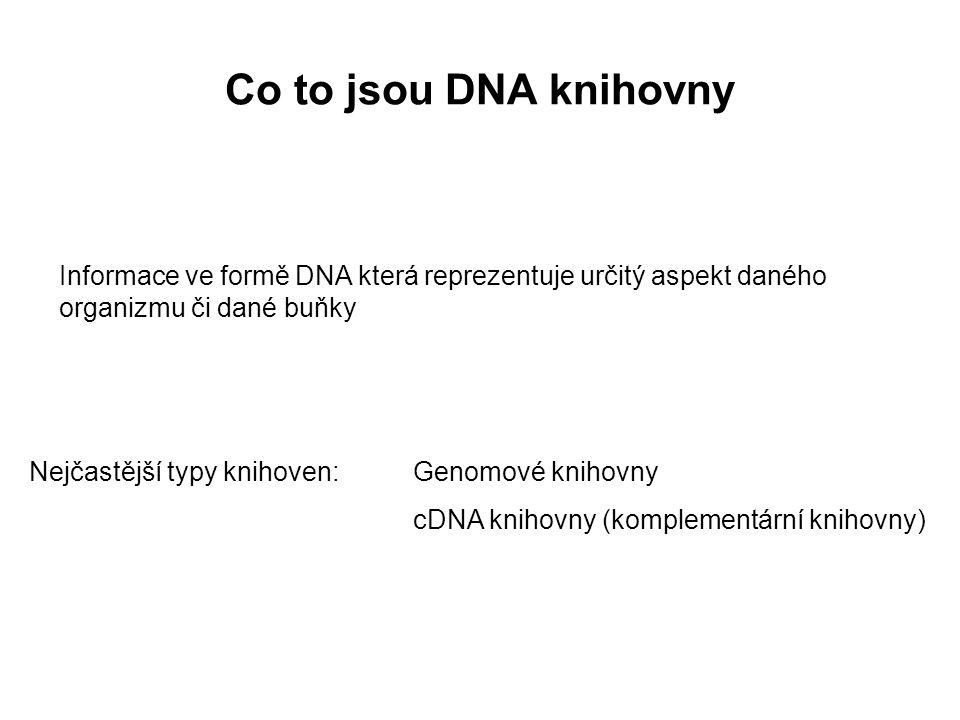 Co to jsou DNA knihovny Informace ve formě DNA která reprezentuje určitý aspekt daného organizmu či dané buňky.