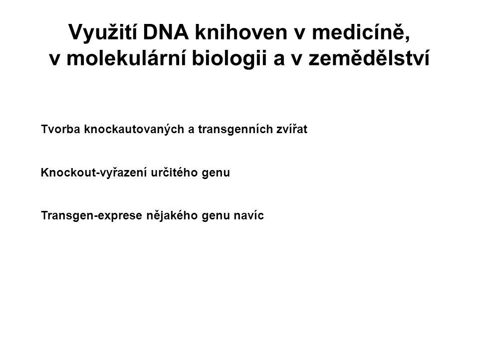 Využití DNA knihoven v medicíně, v molekulární biologii a v zemědělství