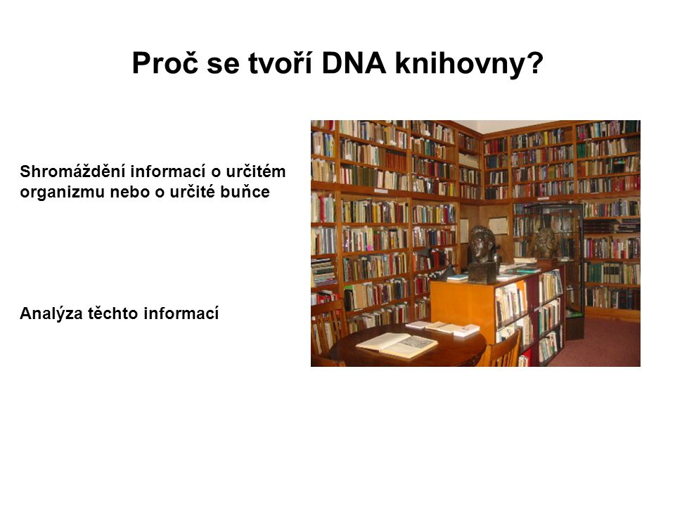 Proč se tvoří DNA knihovny