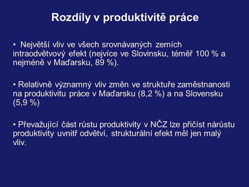 Rozdíly v produktivitě práce