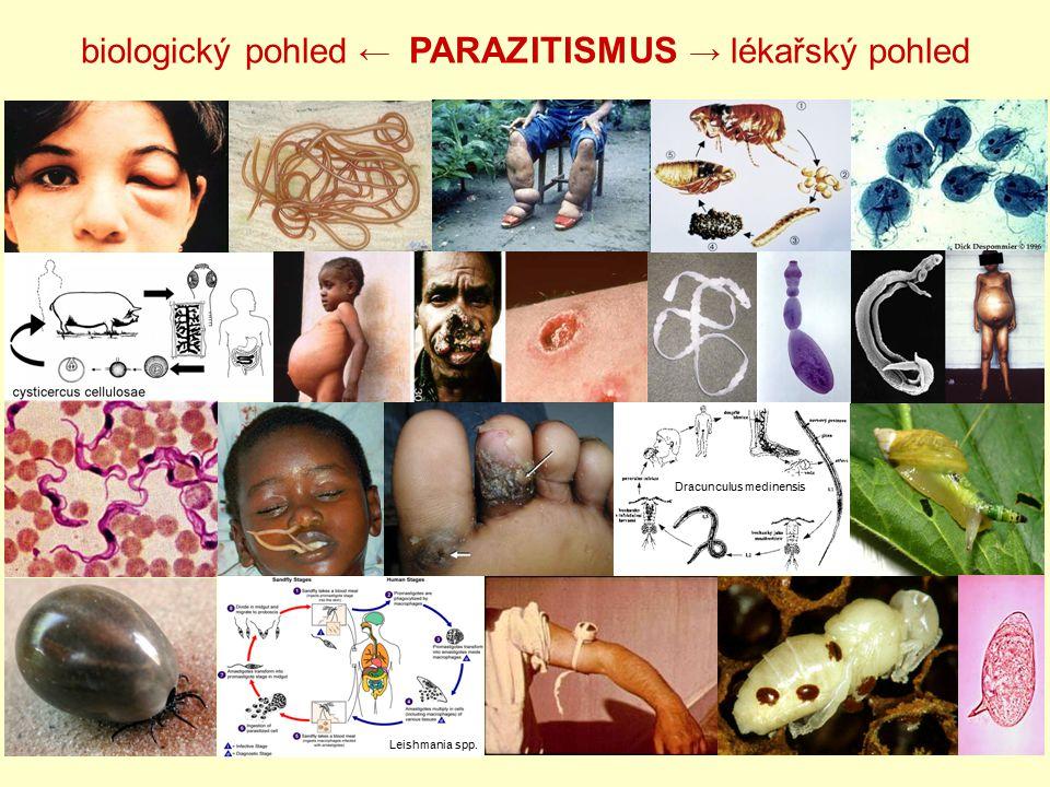 biologický pohled ← PARAZITISMUS → lékařský pohled