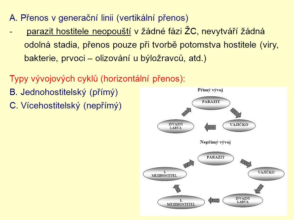 A. Přenos v generační linii (vertikální přenos)