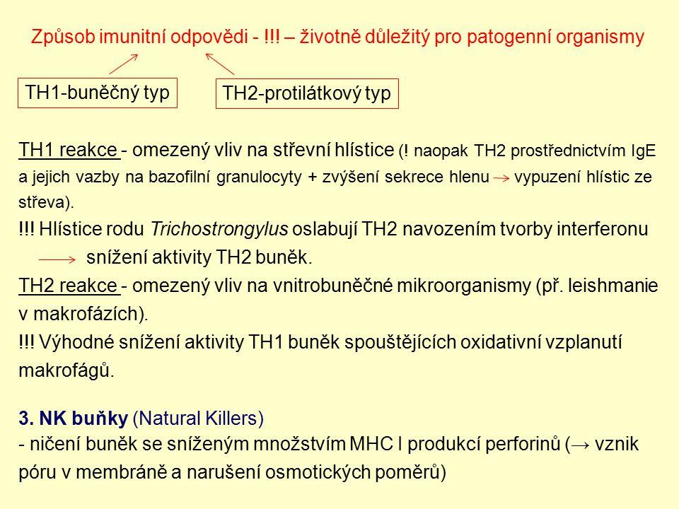 Způsob imunitní odpovědi - !!! – životně důležitý pro patogenní organismy