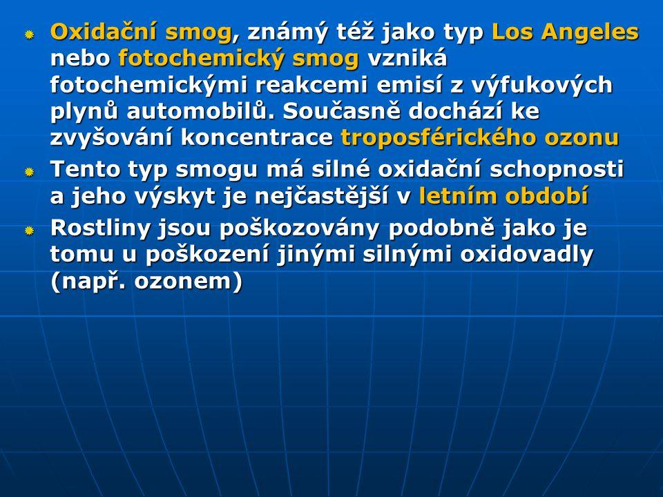 Oxidační smog, známý též jako typ Los Angeles nebo fotochemický smog vzniká fotochemickými reakcemi emisí z výfukových plynů automobilů. Současně dochází ke zvyšování koncentrace troposférického ozonu