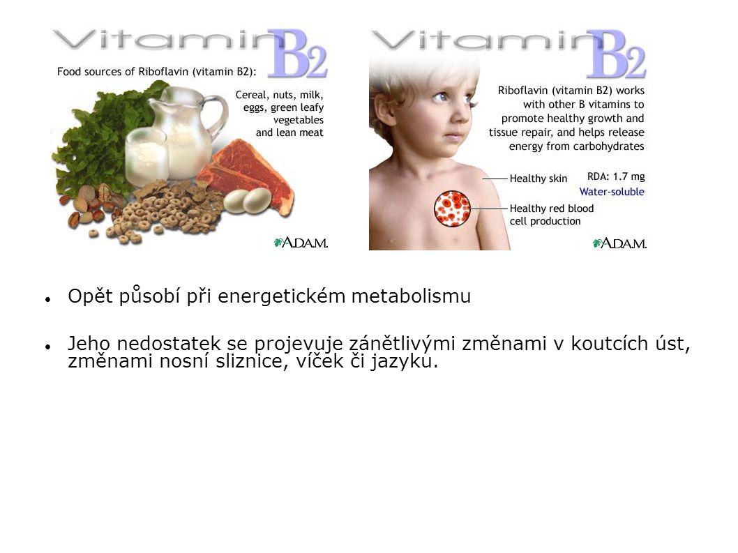 Opět působí při energetickém metabolismu