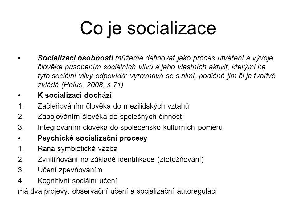 Co je socializace