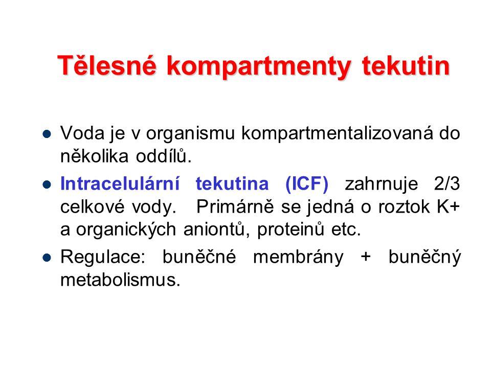 Tělesné kompartmenty tekutin
