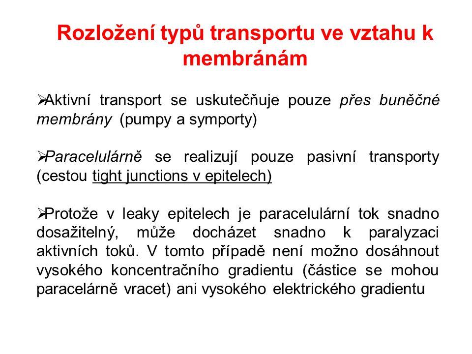 Rozložení typů transportu ve vztahu k membránám