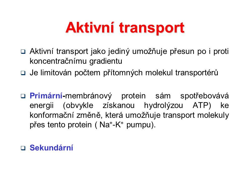 Aktivní transport Aktivní transport jako jediný umožňuje přesun po i proti koncentračnímu gradientu.
