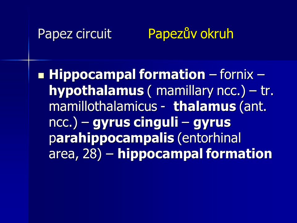 Papez circuit Papezův okruh